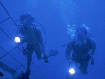 James Cameron Piranha 2 The Spawning - Les Tueurs Volants
